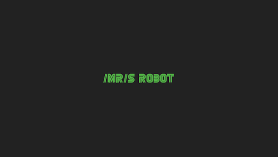mrsrobot 547
